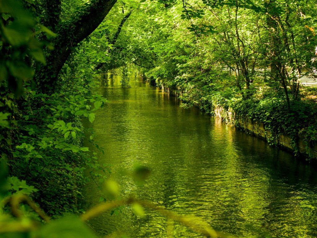 Nicht nur als Straße aus der Geschichte übrig geblieben: Der Westermühlbach fließt durchs Glockenbachviertel